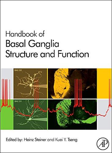 9780123747679: Handbook of Basal Ganglia Structure and Function, Volume 24 (Handbook of Behavioral Neuroscience)