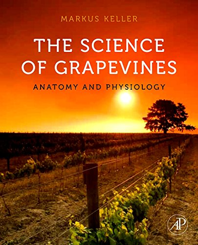9780123748812: The Science of Grapevines: Anatomy and Physiology
