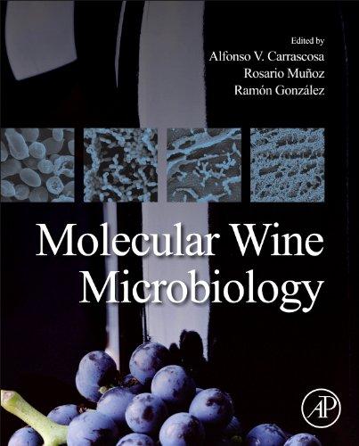 9780123750211: Molecular Wine Microbiology