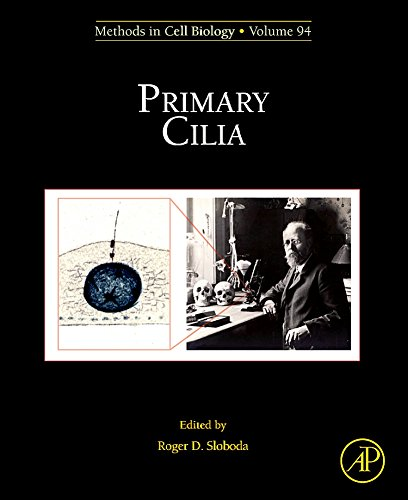 9780123750242: Primary Cilia: 94 (Methods in Cell Biology)