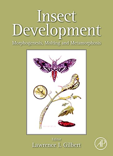 9780123751362: Insect Development: Morphogenesis, Molting and Metamorphosis