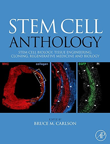 9780123756824: Stem Cell Anthology: From Stem Cell Biology, Tissue Engineering, Cloning, Regenerative Medicine and Biology