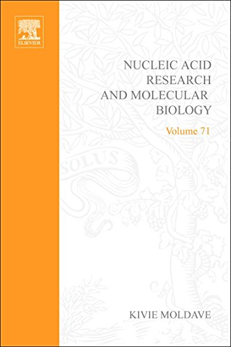 9780123757098: Handbook of Epigenetics: The New Molecular and Medical Genetics