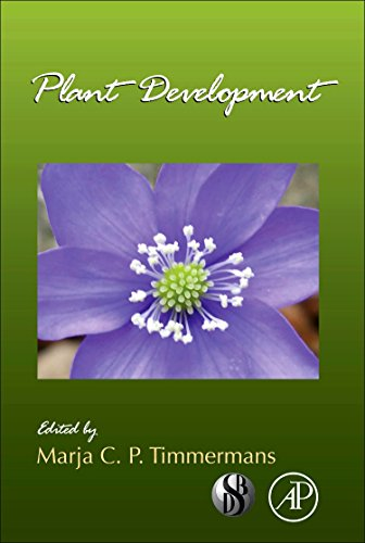 9780123809100: Plant Development, Volume 91 (Current Topics in Developmental Biology)