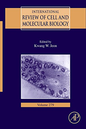 9780123810113: International Review Of Cell and Molecular Biology, Volume 279 (International Review of Cell & Molecular Biology)