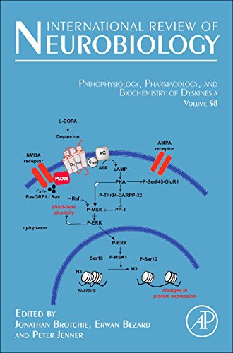 9780123813282: Pathophysiology, Pharmacology and Biochemistry of Dyskinesia, Volume 98 (International Review of Neurobiology)