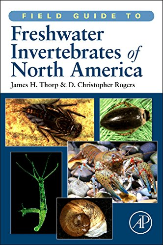 9780123814265: Field Guide to Freshwater Invertebrates of North America (Field Guide To... (Academic Press))