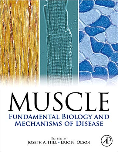 9780123815101: Muscle 2-Volume Set: Fundamental Biology and Mechanisms of Disease