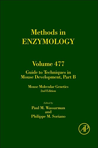 9780123848802: Guide to Techniques in Mouse Development, Part B, Volume 477: Mouse Molecular Genetics (Methods in Enzymology)