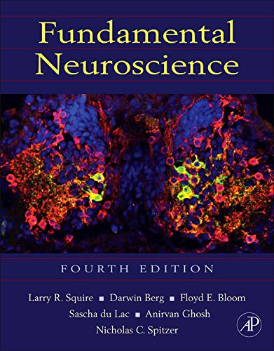 9780123858702: Fundamental Neuroscience
