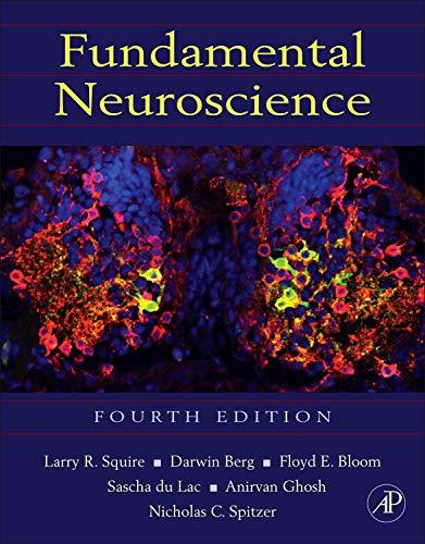 9780123858702: Fundamental Neuroscience, Fourth Edition (Squire,Fundamental Neuroscience)
