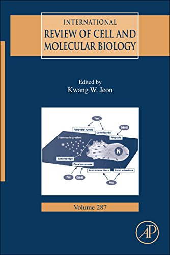 International Review of Cell and Molecular Biology: Volume 287 (Hardback)