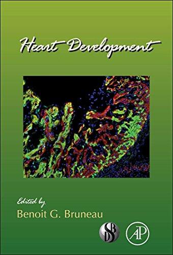 9780123877864: Heart Development, Volume 100 (Current Topics in Developmental Biology)