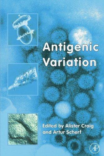 9780123884565: Antigenic Variation