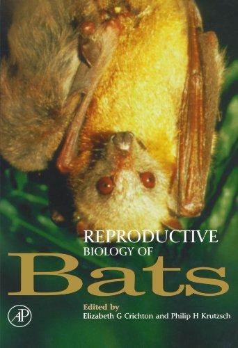 9780123884572: Reproductive Biology of Bats