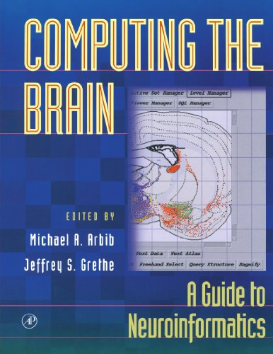 9780123885432: Computing the Brain: A Guide to Neuroinformatics