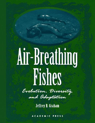 9780123886163: Air-Breathing Fishes: Evolution, Diversity, and Adaptation