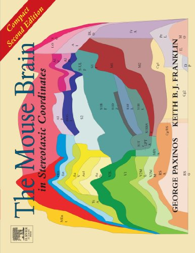 9780123887214: The Mouse Brain in Stereotaxic Coordinates: Compact Second Edition