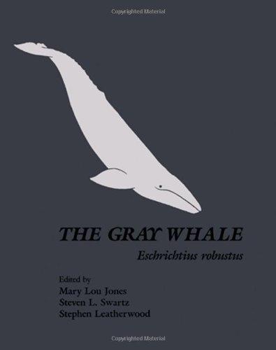 9780123891808: The Gray Whale: Eschrichtius Robustus