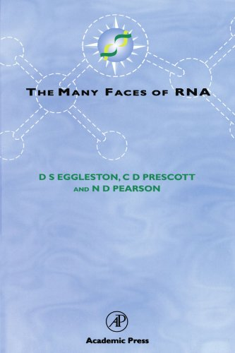 9780123909251: The Many Faces of RNA