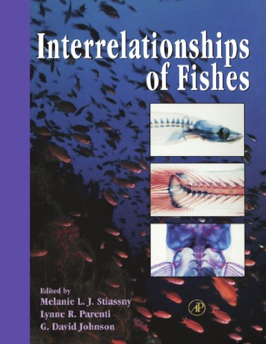 9780123912084: Interrelationships of Fishes
