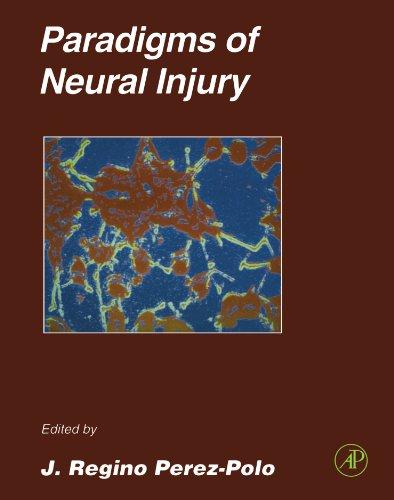 9780123912183: Paradigms of Neural Injury