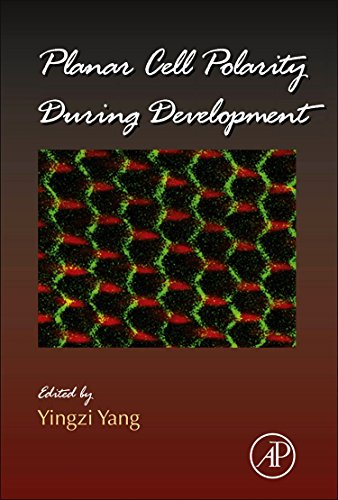 9780123945921: Planar Cell Polarity During Development, Volume 101 (Current Topics in Developmental Biology)