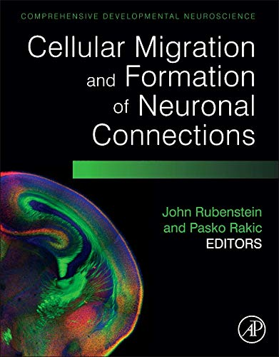 9780123972668: Cellular Migration and Formation of Neuronal Connections: Comprehensive Developmental Neuroscience