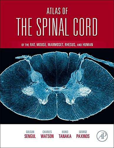 9780123978769: Atlas of the Spinal Cord: Mouse, Rat, Rhesus, Marmoset, and Human