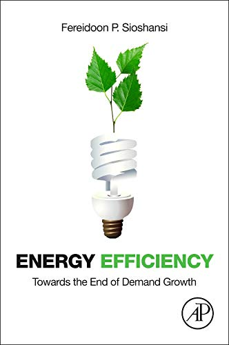 9780123978790: Energy Efficiency: Towards the End of Demand Growth