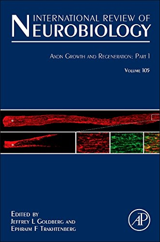 9780123983091: Axon Growth and Regeneration: Part 1: 105 (International Review of Neurobiology)