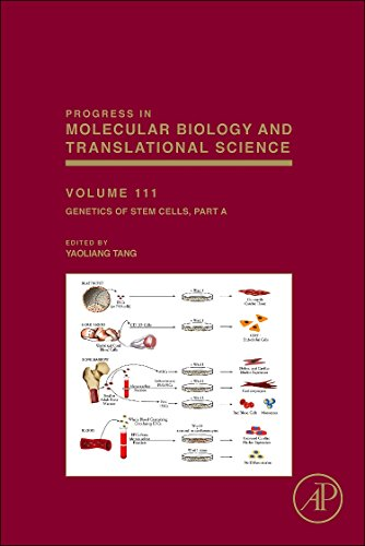9780123984593: Genetics of Stem Cells, Volume 111: Part A (Progress in Molecular Biology and Translational Science)