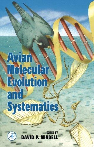 9780123995858: Avian Molecular Evolution and Systematics