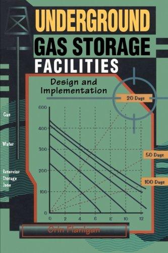 9780123996527: Underground Gas Storage Facilities