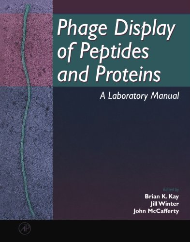 9780124023802: Phage Display of Peptides and Proteins: A Laboratory Manual