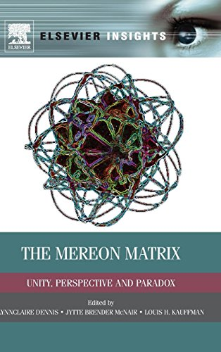 9780124046139: The Mereon Matrix: Unity, Perspective and Paradox (Elsevier Insights)