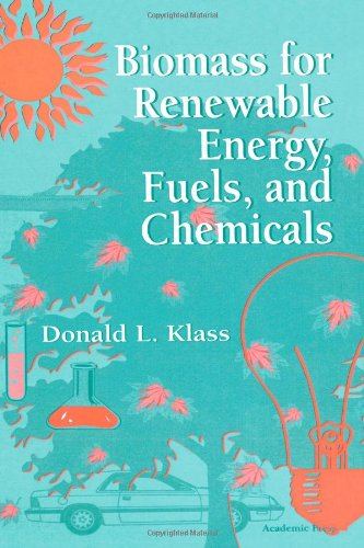 9780124109506: Biomass for Renewable Energy, Fuels and Chemicals