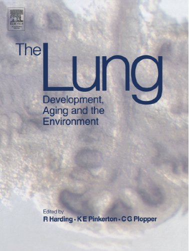 9780124111707: The Lung: Development, Aging and the Environment