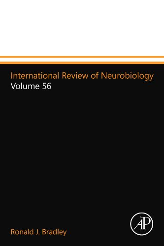9780124112261: International Review of Neurobiology: Volume 56
