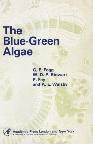 9780124146044: The Blue-Green Algae