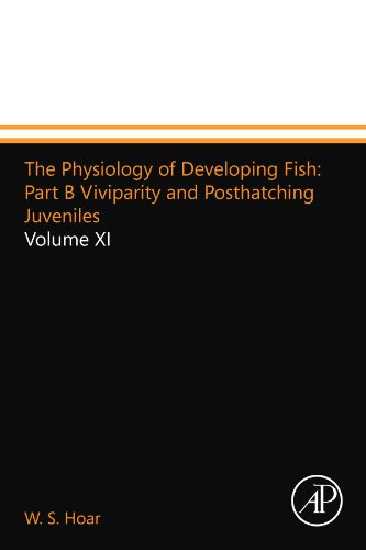 9780124157323: The Physiology of Developing Fish: Part B Viviparity and Posthatching Juveniles: Volume XI