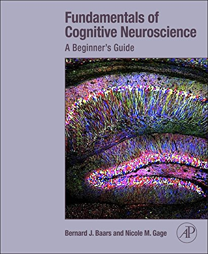9780124158054: Fundamentals of Cognitive Neuroscience: A Beginner's Guide