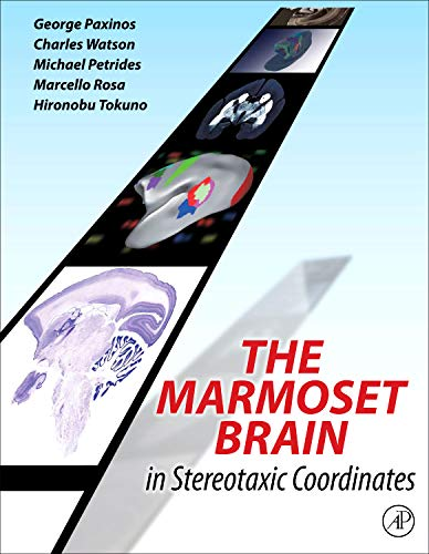 9780124158184: The Marmoset Brain in Stereotaxic Coordinates