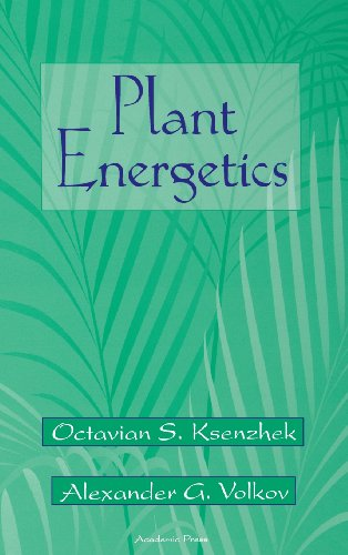 Plant Energetics: Octavian S. Ksenzhek