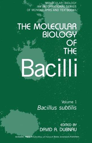 9780124314504: Bacillus Subtilis V1
