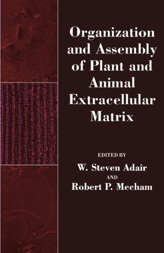 9780124315204: Organization and Assembly of Plant and Animal Extracellular Matrix