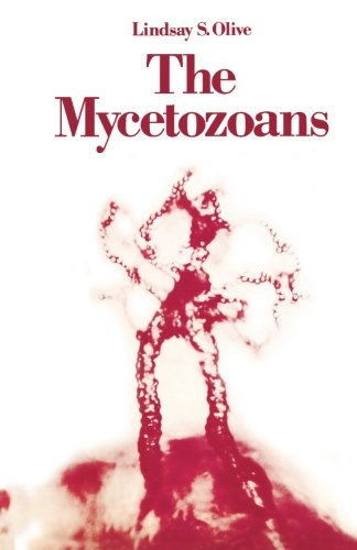 9780124333611: The Mycetozoans