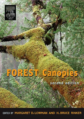 9780124575530: Forest Canopies (Physiological Ecology)
