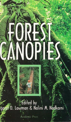 9780124576506: Forest Canopies (Physiological Ecology)