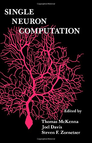 9780124848153: Single Neuron Computation (Neural Networks: Foundations to Applications)